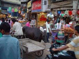 Delhi tours, Delhi private tours, personal tours, ToursByLocals