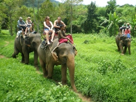 Thailand private tours photo