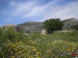 Naxos tours, Naxos private tours, personal tours, ToursByLocals