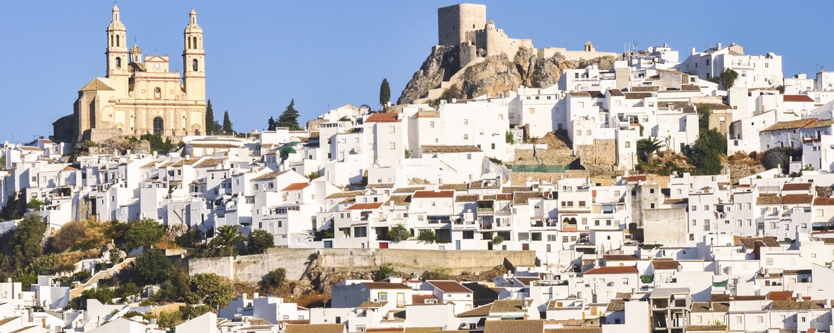 Private Tours in Cadiz