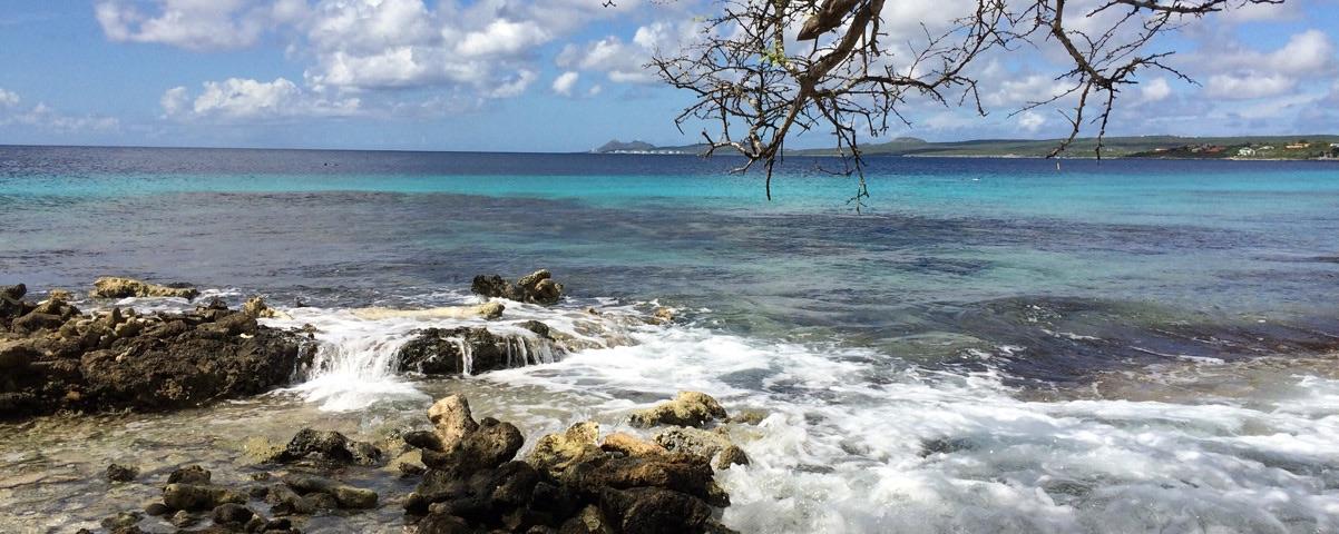 Private Tours in Bonaire