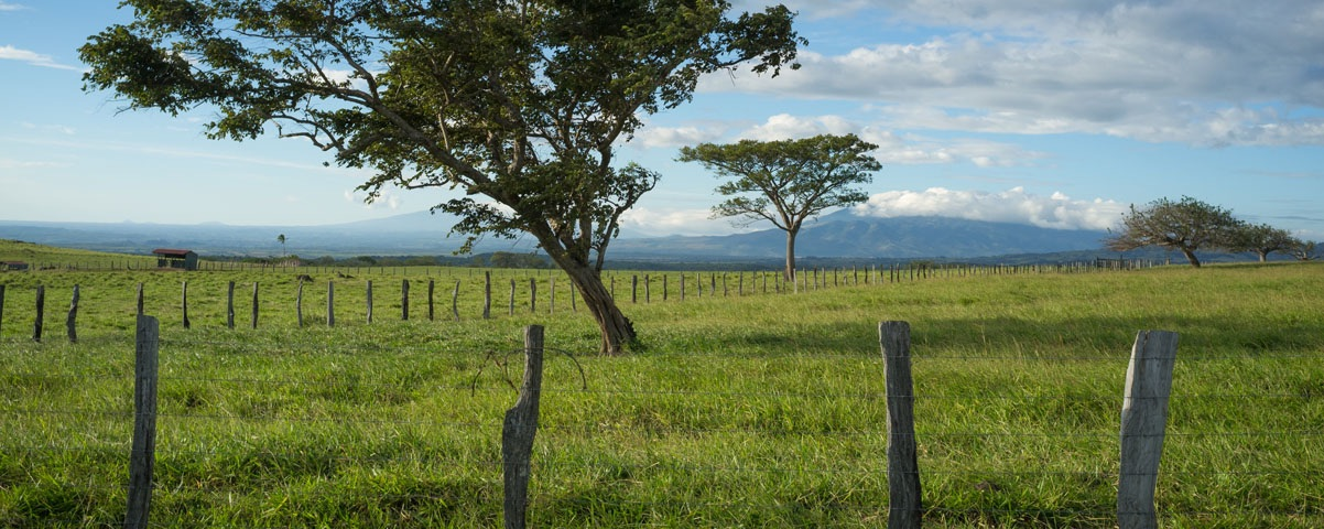 Private Tours in Guanacaste