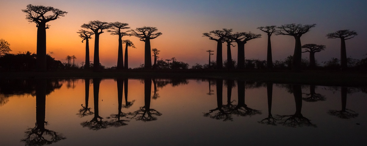 Private Tours in Madagascar
