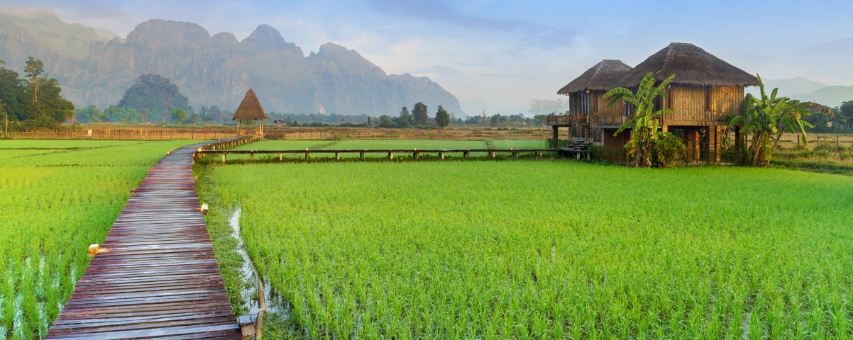 Private Tours in Laos