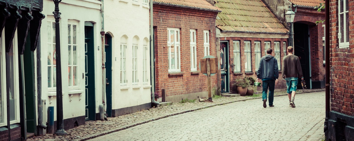 Private Tours in Denmark