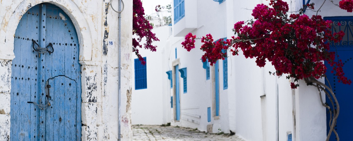 Private Tours in Tunisia