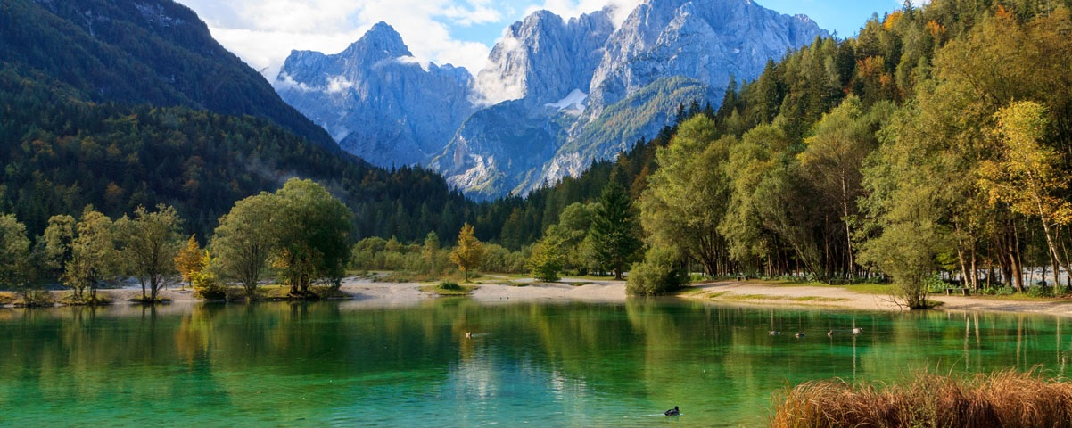 Private Tours in Bled and Kranjska Gora