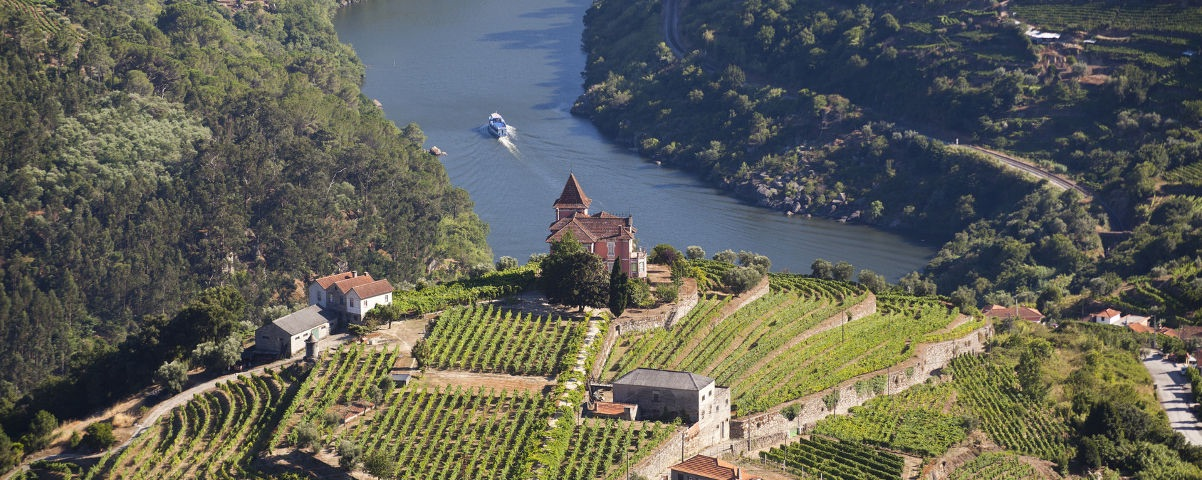 Private Tours in Douro Valley