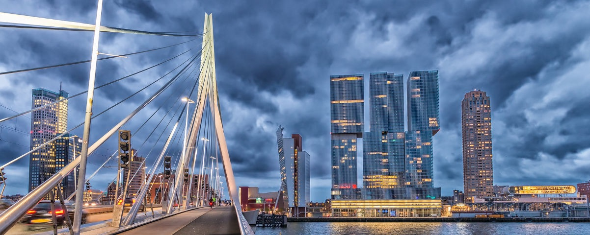 Private Tours in Rotterdam