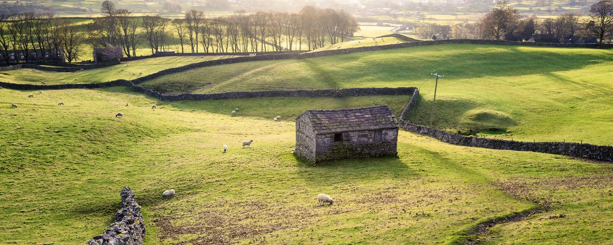 Private Tours in Yorkshire Dales