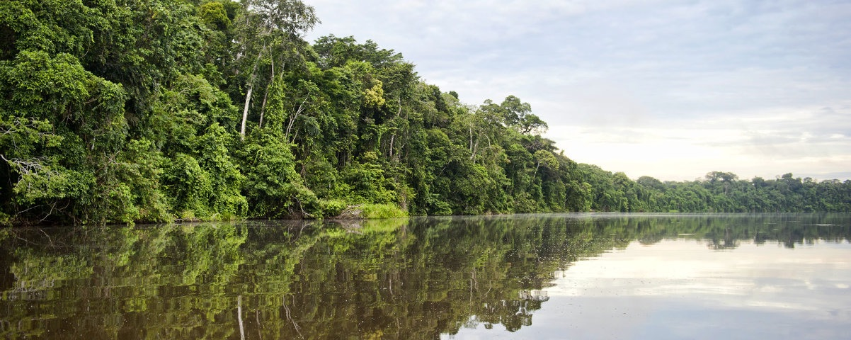 Private Tours in Puerto Maldonado