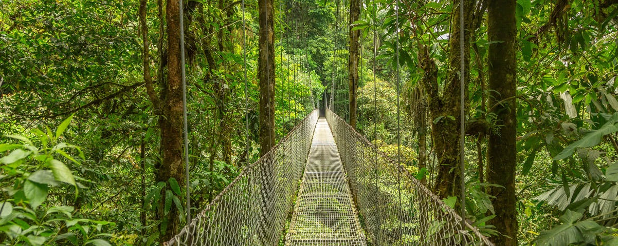 Private Tours in Monteverde