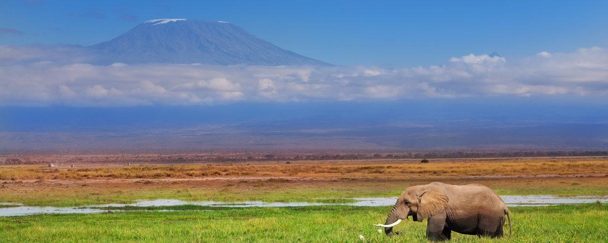 Private Tours in Mt Kilimanjaro