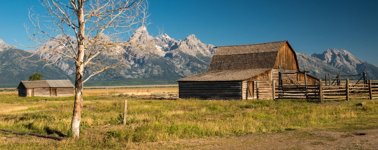 Private Tours in Grand Teton National Park