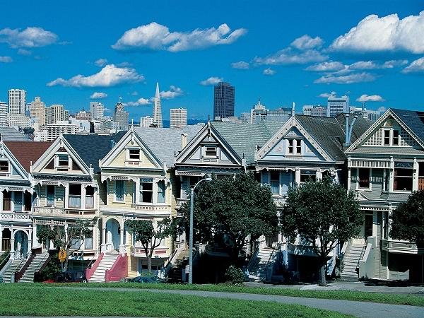The Perfect Day - Private San Francisco, Sausalito & Muir Woods Tour