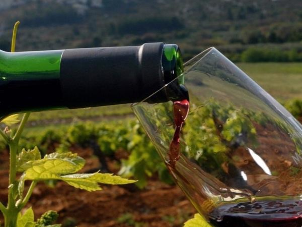 Provencal wine tours-private tour full day-