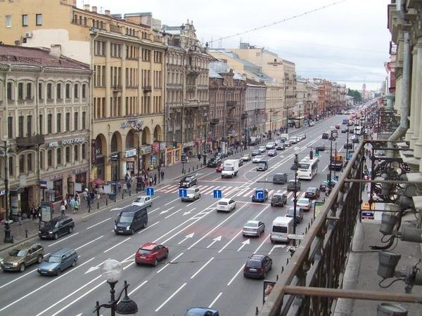 Half day St. Petersburg Private City Tour (by car/mini bus)