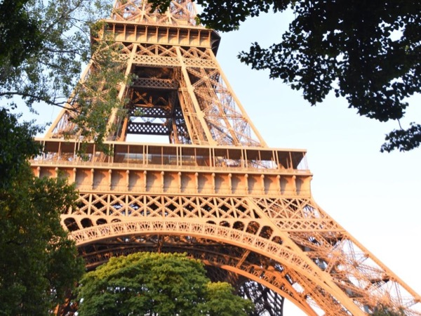 Magnificent Paris Private Walking Tour