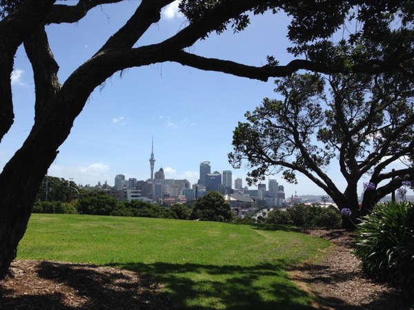 Auckland in a Day with a private guide