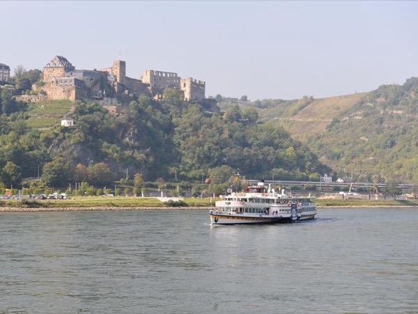 Ruedesheim and Rhine Castles 6-7 hours layover private tour