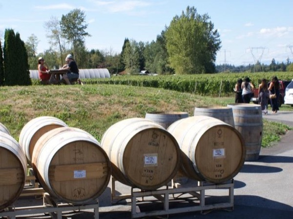 Greater Vancouver Valley Wine Private Tour