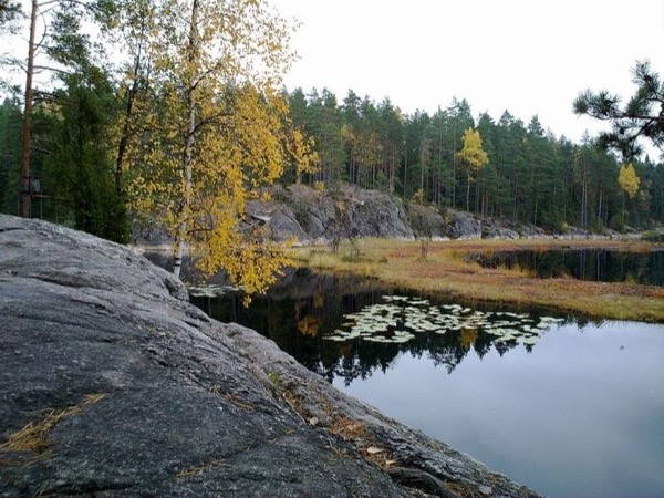 National Park Nuuksio, walking tour. Nature seldom seen so close to a big city.