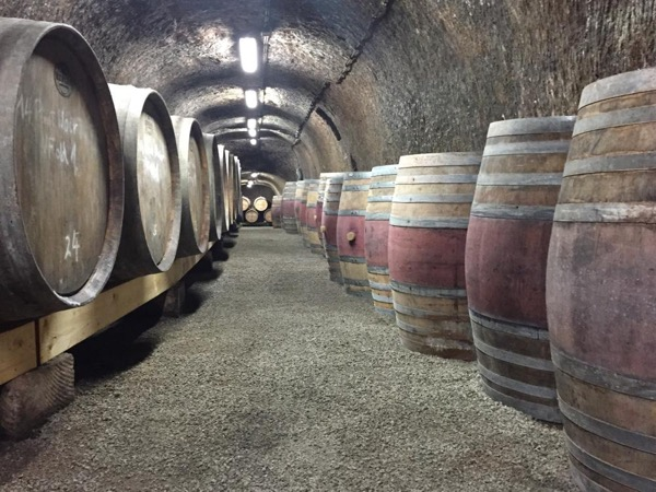 Private wine tour to Eger wine region with a wine-specialized tour guide