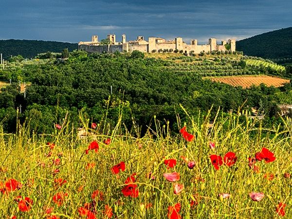 Monteriggioni, Volterra and San Gimignano - Private Tours leaving from Florence and surroundings...