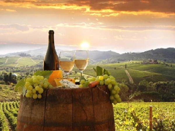 Chianti Wine tour - Private Tours leaving from Florence and surroundings...