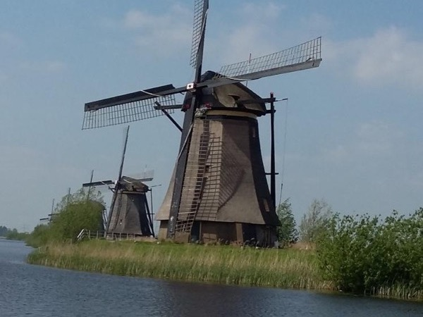 Kinderdijk Windmills, Rotterdam, Delft and The Hague Private Tour