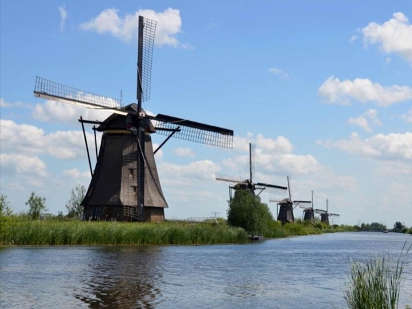 Windmills, Cheese and Tulips, Private Tour in the Spring 2020
