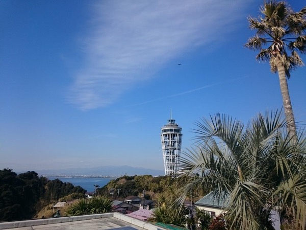 Day Trip to Enoshima and Shonan Area