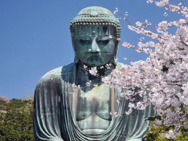 Kamakura Sightseeing by Car