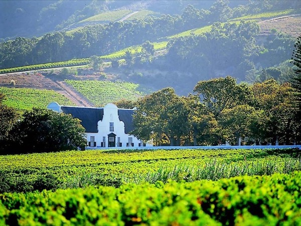 Cape Winelands Private Tour Package