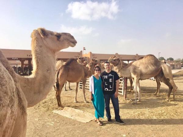 Dubai Airport Layover - 8hr private tour