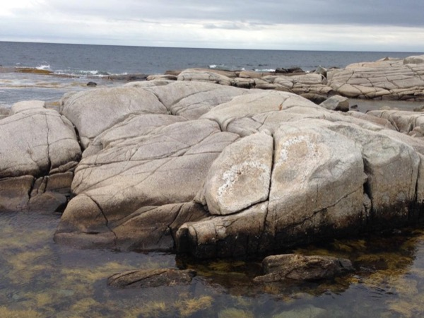 Step-on Peggy's Cove-Halifax Tour (Based on the Client Providing the Vehicle)