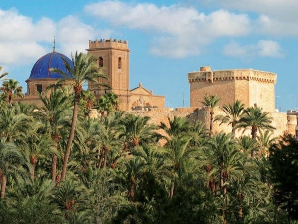 Elche 3h private walking tour