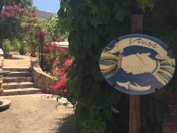 Valle de Guadalupe Wine Country Tour