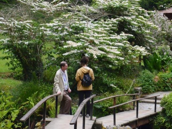 Irish Gardens Private Tour