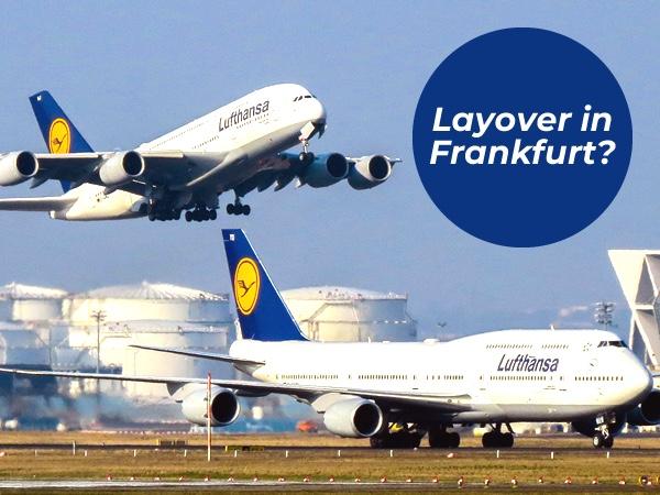 Frankfurt Bespoke Layover Private Tour