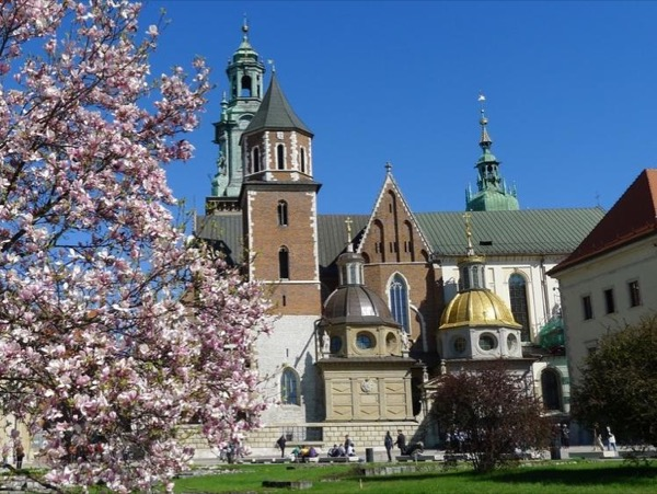 Wawel Hill and Old Town Private Tour