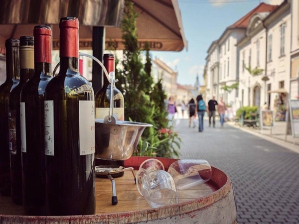 Private day trip to Eger, home of wines and site of an epic medieval castle siege (for up to 6 people)