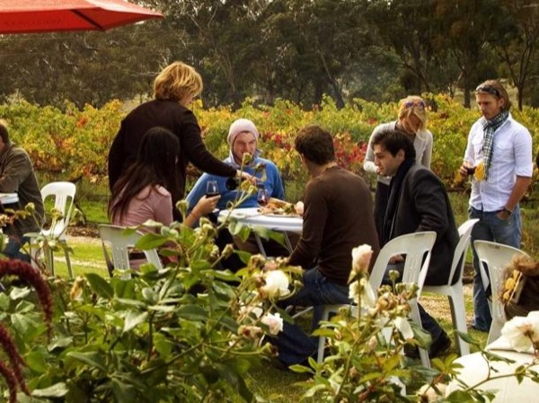 Clare Valley Intimate Winery Tour by Private Limo