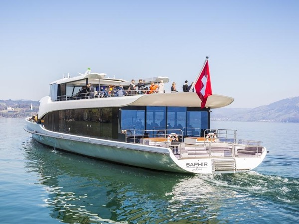 Lucerne Walking & Boat Tour - The Total Swiss Experience
