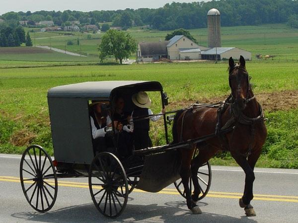 New York to Amish Country Tour | Private Driver-Guide & Vehicle