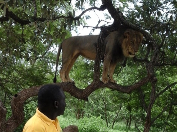 Private tour guide Oumar