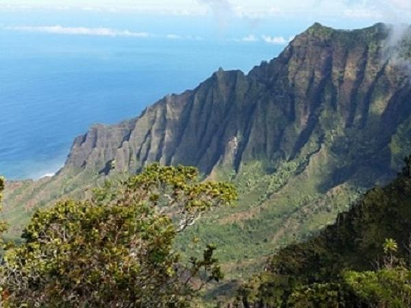 Waimea Canyon and Kauai Waterfalls Private Tour