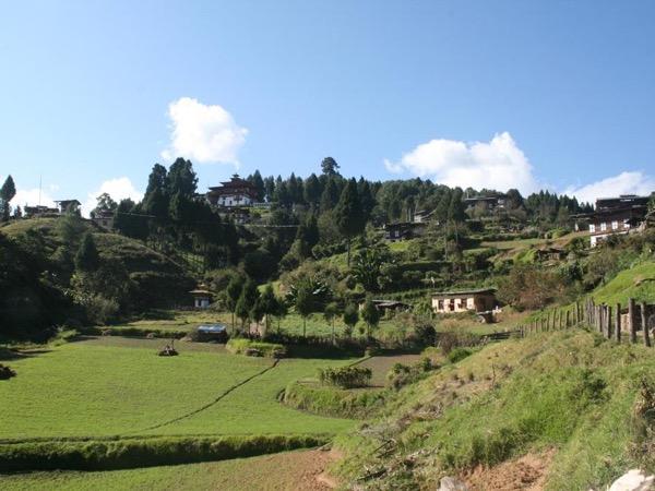 Bhutan 5 days private tour