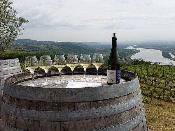 Private Wine Tour in the Northern Rhône Valley