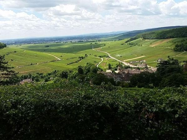 Private Wine Tour in Burgundy around Beaune